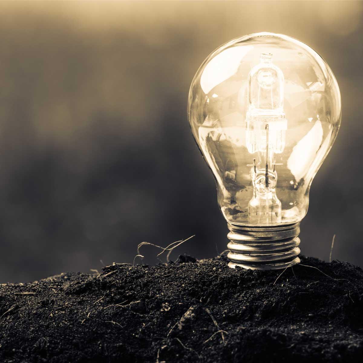 Sustainability Light
